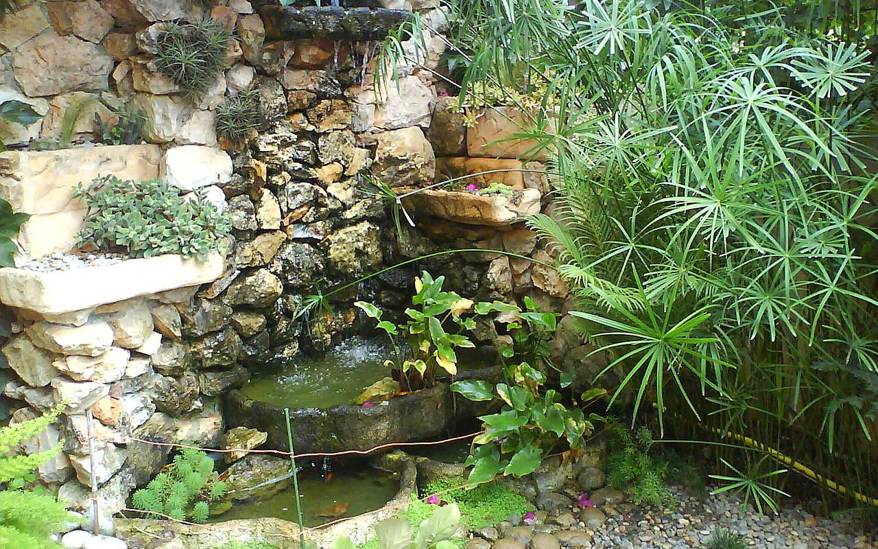 gomariz-jardineros-galeria-16-palma-de-mallorca