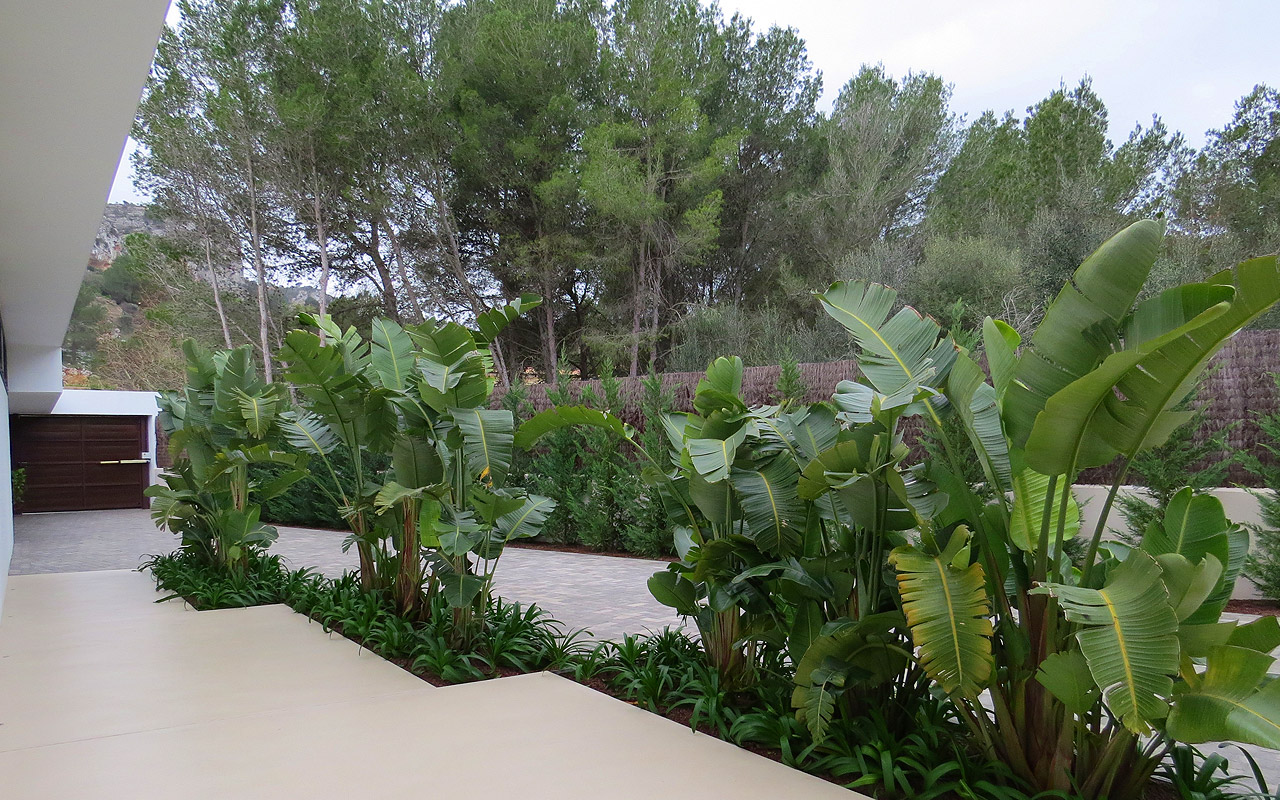 gomariz-jardineros-galeria-17-palma-de-mallorca