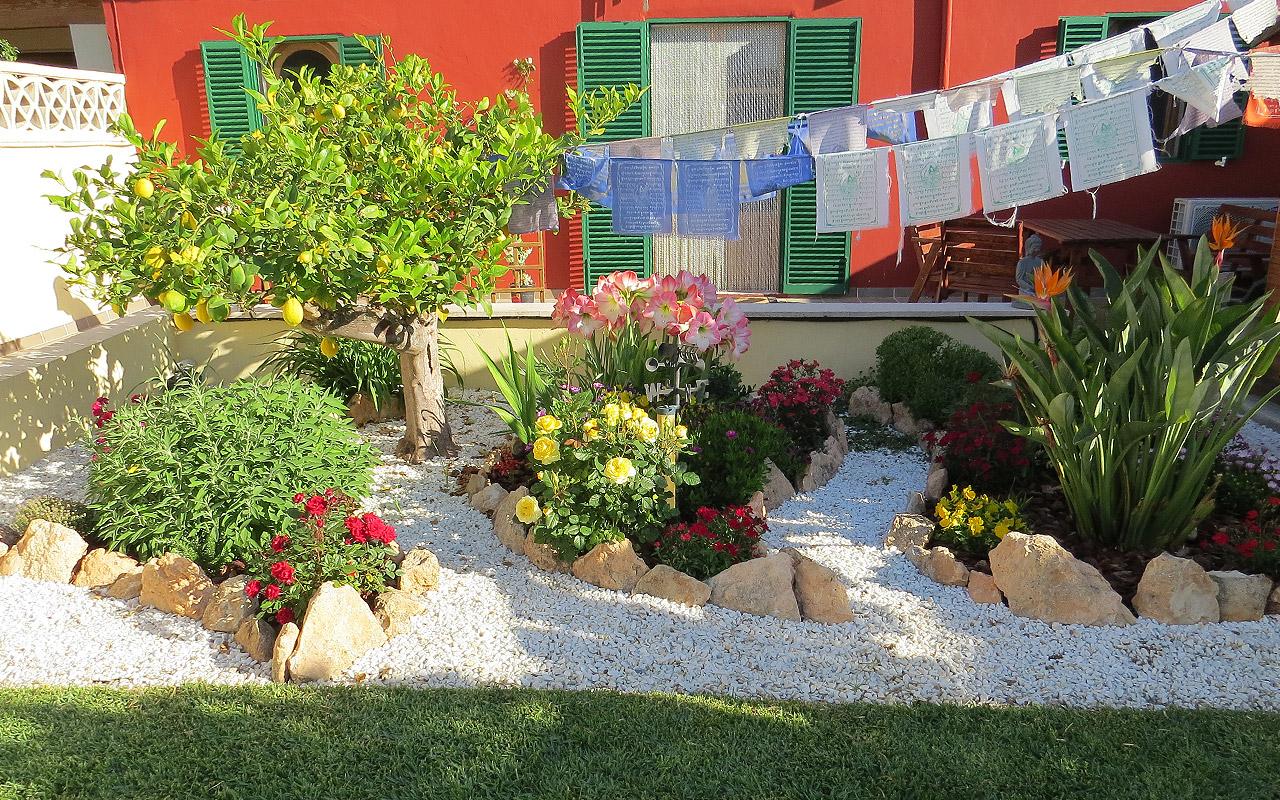 gomariz-jardineros-galeria-18-palma-de-mallorca