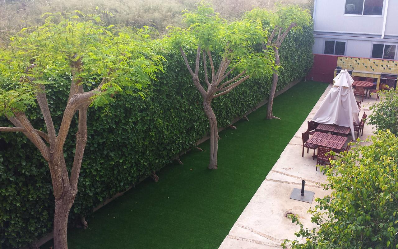 gomariz-jardineros-galeria-4-palma-de-mallorca