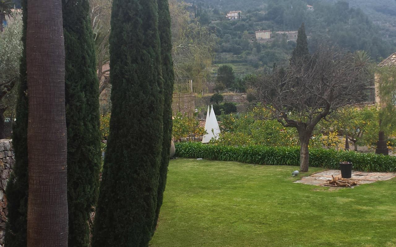 gomariz-jardineros-galeria-9-palma-de-mallorca